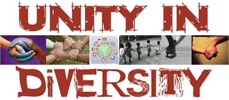 1000+ Unity In Diversity Quotes On Pinterest