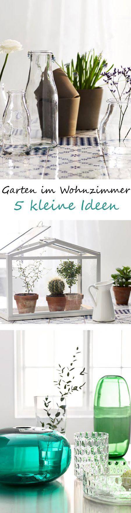 kleines baumkrone wohnzimmer sammlung abbild oder bfbeedcccd indoor gardening