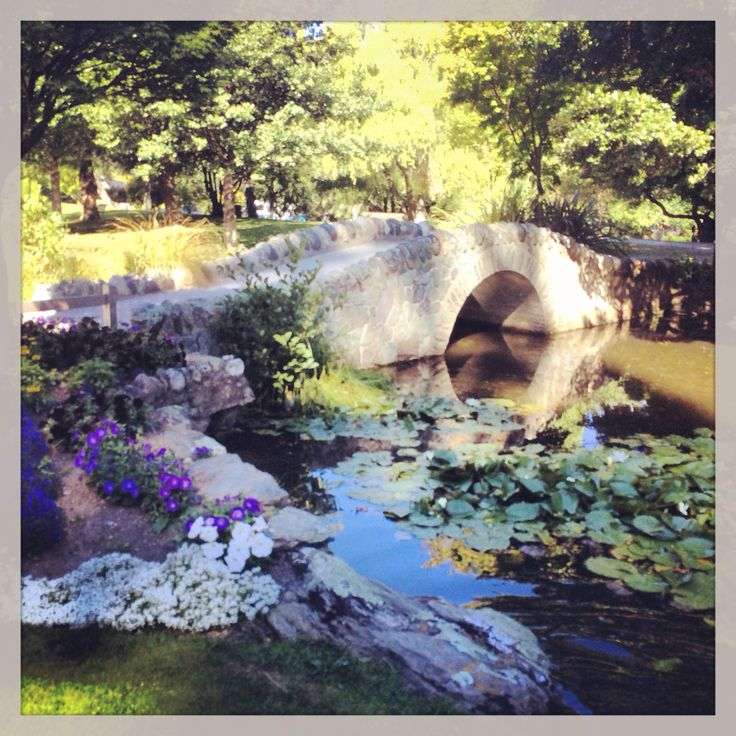 17 best autumn in new zealand images on pinterest for Garden design queenstown