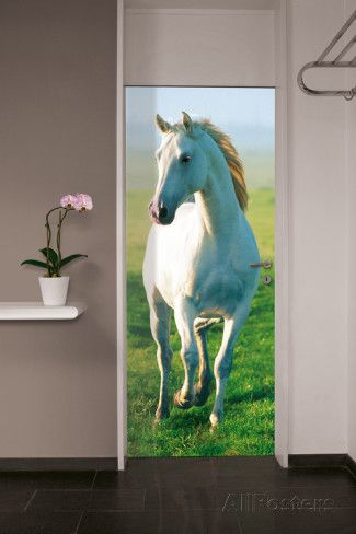 White Horse Door Wallpaper Mural Behangposter
