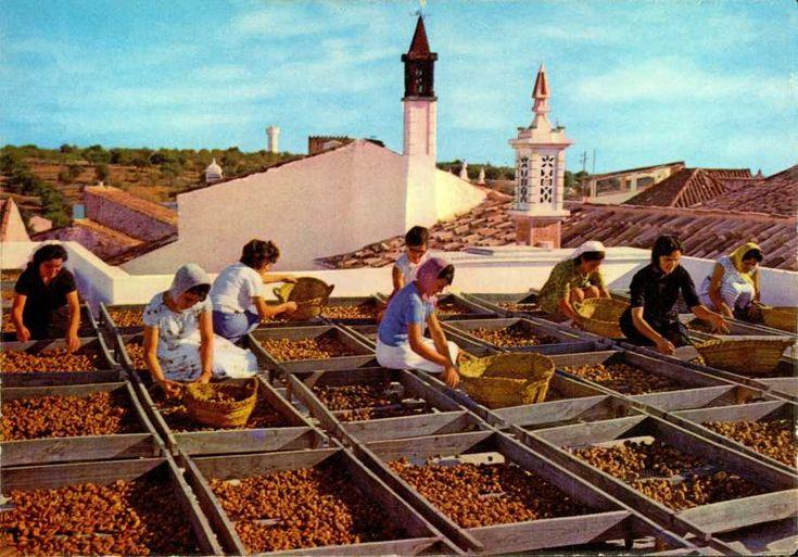Ai mê rico Algarve!: Secagem Figo