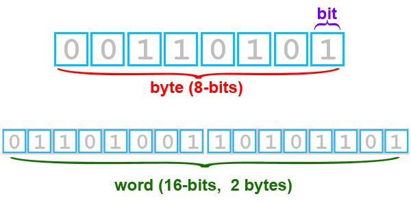 A BYTE usually STORES ONE CHARACTER, such as a letter. | System Unit | Pinterest | The unit and Coding