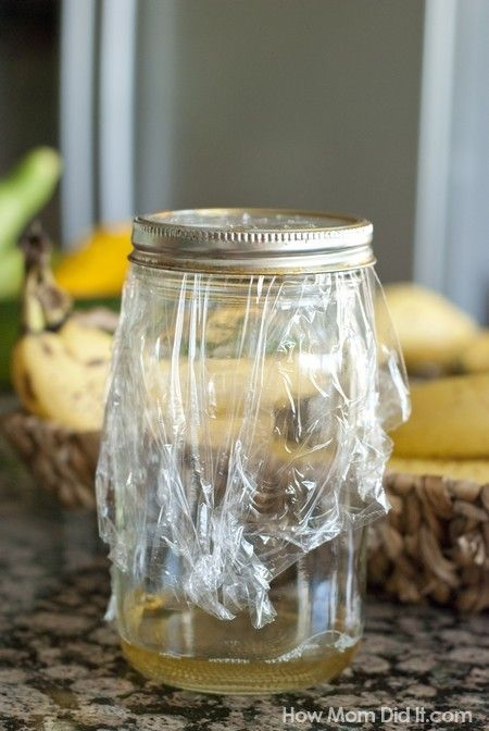 Make a fruit fly trap using an empty jar plastic wrap w for Saponi per baite
