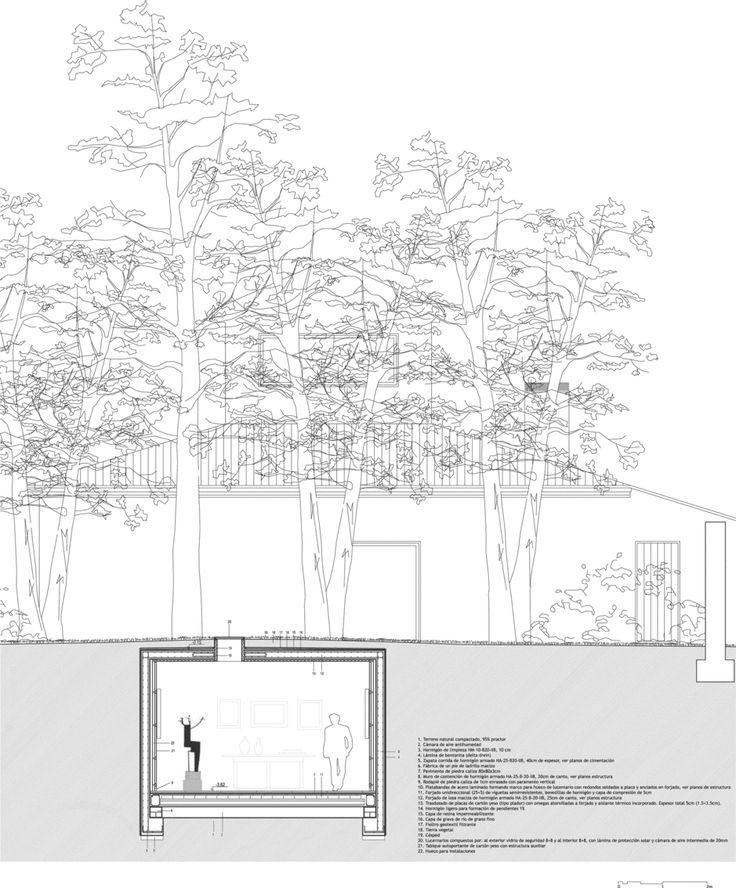 Elisa Valero.  Un Jardín Atravesado.  Details frames