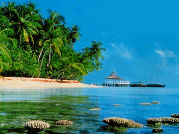 12. Bom Bom Islet, Sao Tome and Principe - 20 Best Beaches in Africa ... → Travel