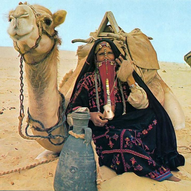 A look at the life of the bedouin of egypt