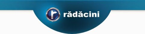 Daniele: Masina visurilor mele de la Radacini  http://daniela-florentina.blogspot.ro/2014/12/masina-visurilor-mele-de-la-radacini.html