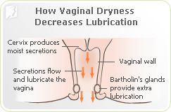 Synthetic hormones vaginal dryness