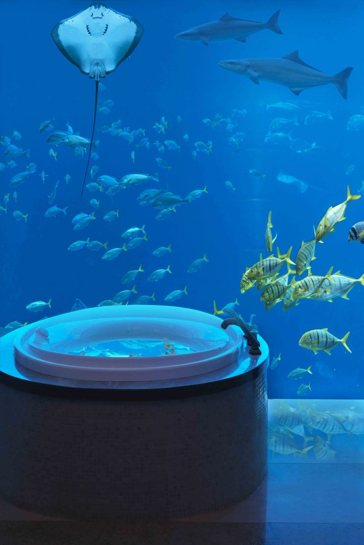A bathroom with a view. Atlantis The Palm's Underwater Suite #Dubai #Bathroom #Travel