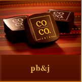 co co. sala pb&j artisanal chocolate