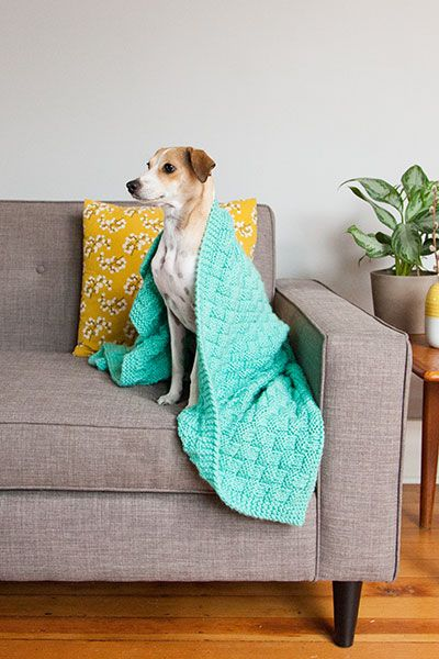 Free Crochet Pattern Pet Blanket : 1000+ images about Charity Knitting and Crocheting on ...