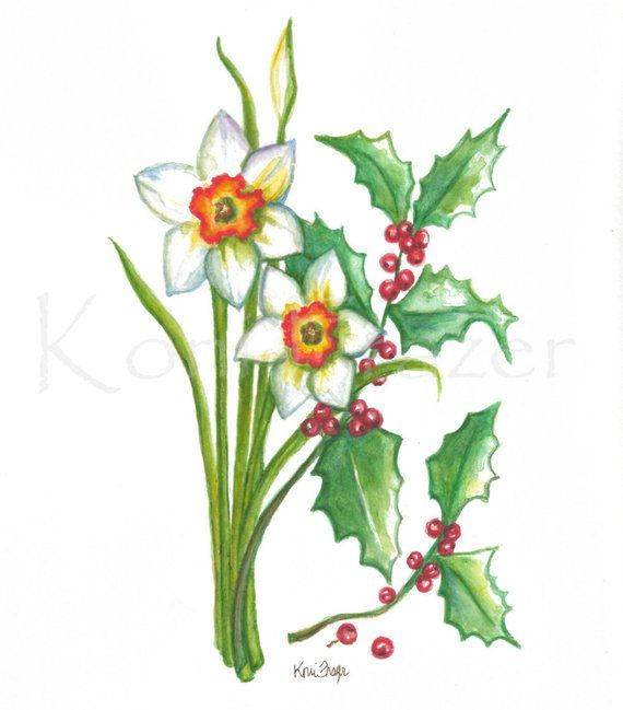 Narcissus And Holly December Birthday Flower Original Etsy Birth Month Flowers December Flower Tattoo Birth Flower Tattoos