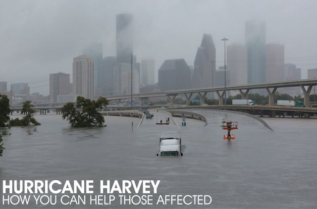 "Whether you live in proximity to those affected or are outside the parameters of offering help in person, there are still ways that you can help the victims of Hurricane Harvey. As an industry – whether hair or beauty – we know the meaning and the impact of a ""community"" and as one here are the ways in which you can help another in need. Read on to learn how you can help fellow hairstylists, families, individuals and pets in need..."