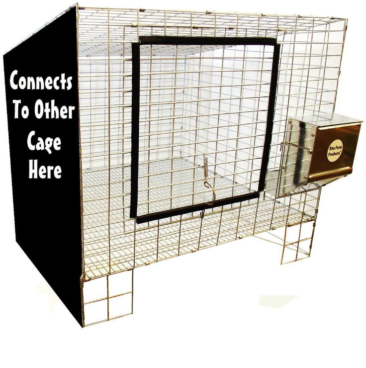 """1 RITE FARM PRODUCTS ADD ON 24""""X24"""" WIRE RABBIT CAGE BUNNY INDOOR OUTDOOR MEAT #RiteFarmProducts"""