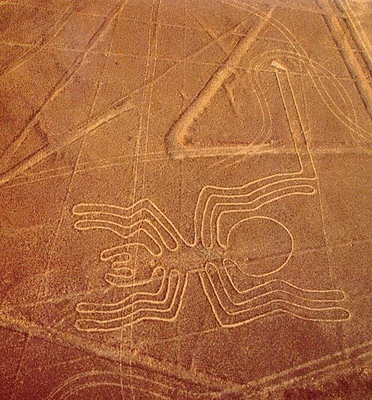 Nasca Lines, The spider.  Found 2,000 miles away, is 1/4 an inch in size and the long leg off to the top is its reproductive organ.  It can only be seen with a microscope.