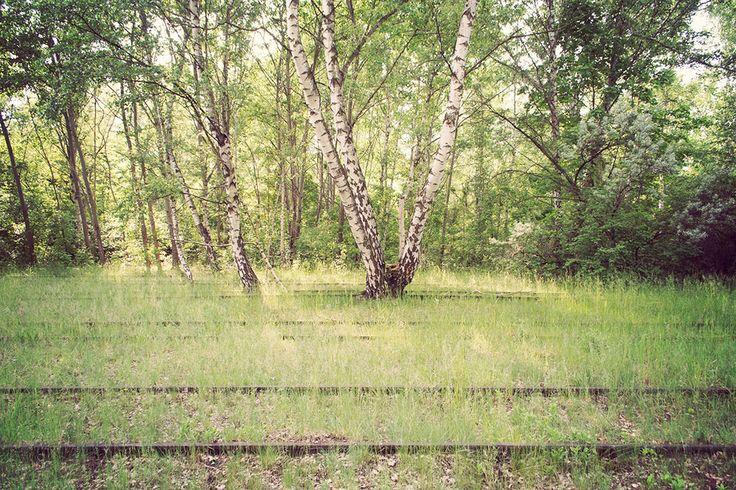 Schoeneberg-Sudgelande_19 « Landscape Architecture Works   Landezine