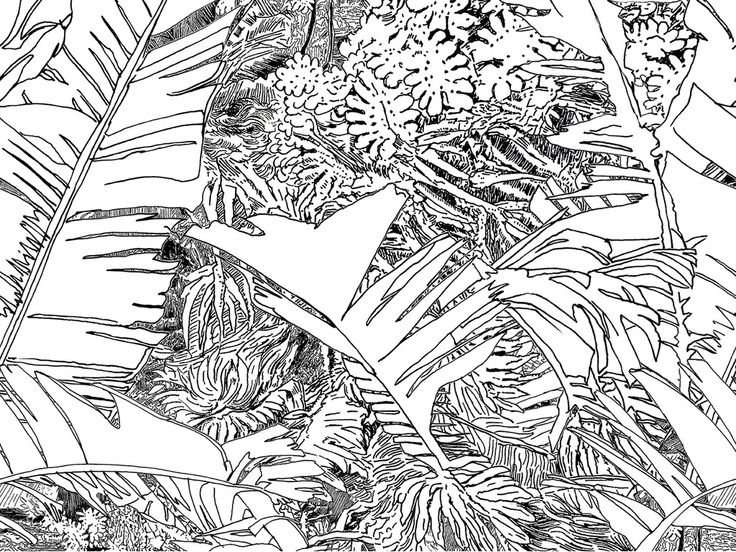 Wallpaper - Jungle lé2 by Tiphaine de Bodman - Objets - PETITE FRITURE - Editeur de Design - gros plan - Black
