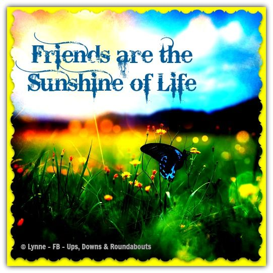 Friendship the sunshine of life