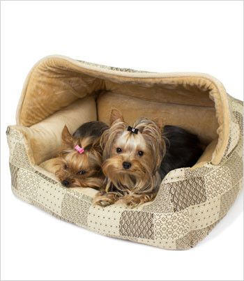 hooded lounge dog bed 20x25