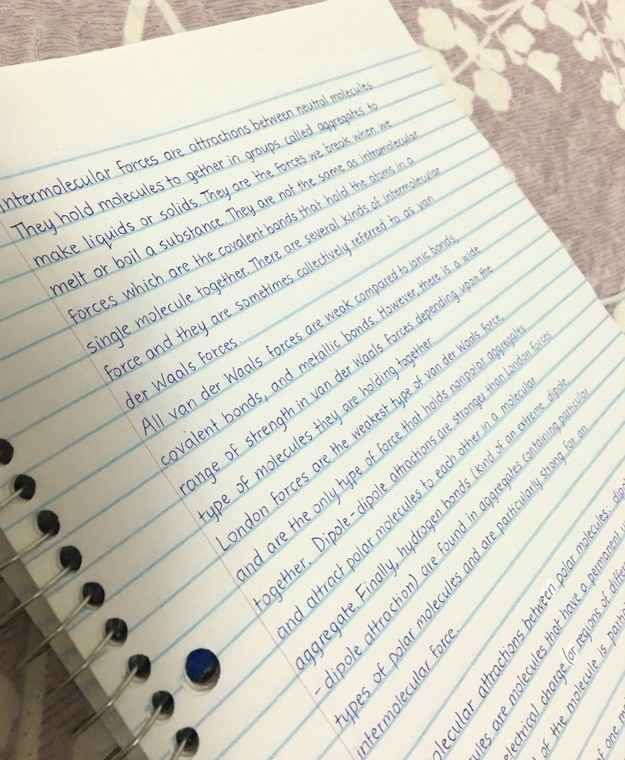 Freaking beautiful handwriting: I want to study these notes All. Night. Long.