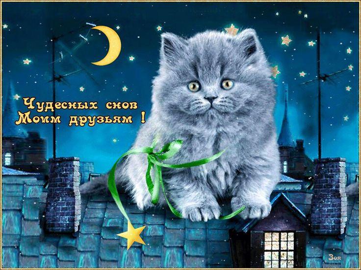 Картинки открытки доброго вечера и спокойной ночи, своими