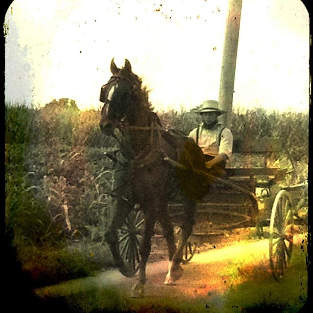 Nous voilà au pays des Amish... Un univers très différent du notre où le passé s'entre-choc avec le présent donnant libre cours aux anachronismes...