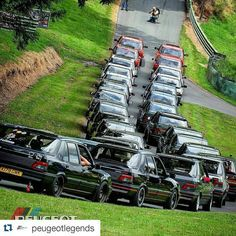 Happy 30th Birthday 309! Peugeot 309 GTI Goodwood Pugfest 2015