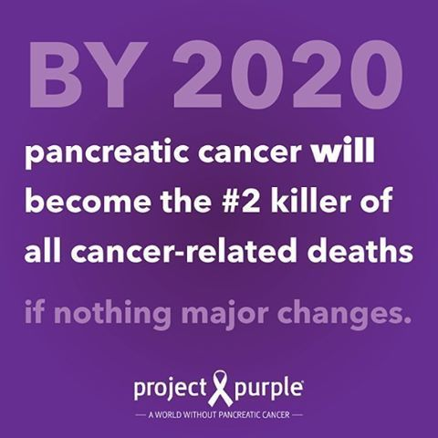 Pancreatic Cancer Risks: What You Need to Know http://www.projectpurple.org/risk-prevent-pancreatic-cancer/?utm_campaign=coschedule&utm_source=pinterest&utm_medium=Project%20Purple&utm_content=Pancreatic%20Cancer%20Risks%3A%20What%20You%20Need%20to%20Know