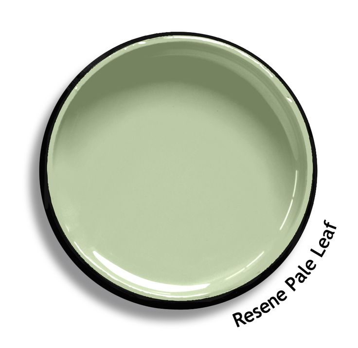 Resene Pale Leaf is a calm misty green, natural and uncomplicated in spirit. From the Resene Multifinish colour collection. Try a Resene testpot or view a physical sample at your Resene ColorShop or Reseller before making your final colour choice. www.resene.co.nz