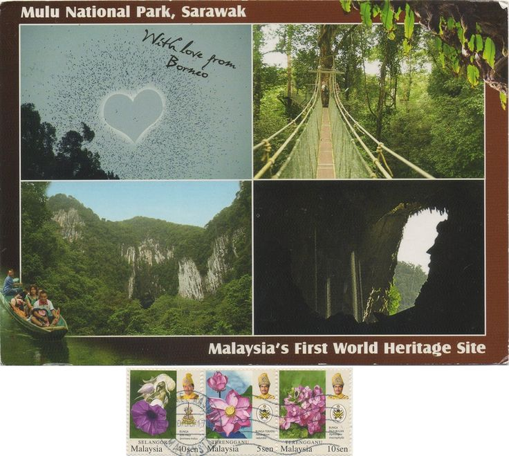MYS-28404 - Arrived: 2017.09.14   ---  The Gunung Mulu National Park is a national park in Miri Division, Sarawak, Malaysia, is a UNESCO World Heritage Site that encompasses caves and karst formations in a mountainous equatorial rainforest setting. The park is famous for its caves and the expeditions that have been mounted to explore them and their surrounding rainforest, most notably the Royal Geographical Society Expedition of 1977–1978, which saw over 100 scientists in the field for 15…