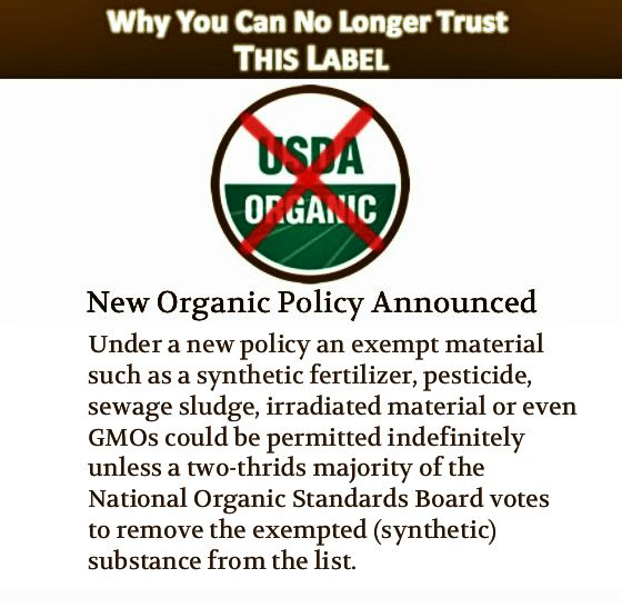Does Monsanto Cafeteria Serve Organic Food