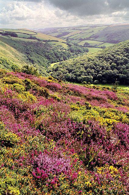 Exmoor, Devon, England. Lorna Doone