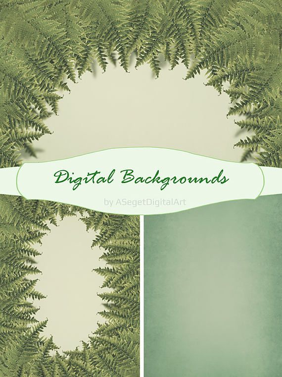 Digital Background, Photo Background, backdrops, backgrounds,photoshop template,baby session, ferns,textures,Jpeg