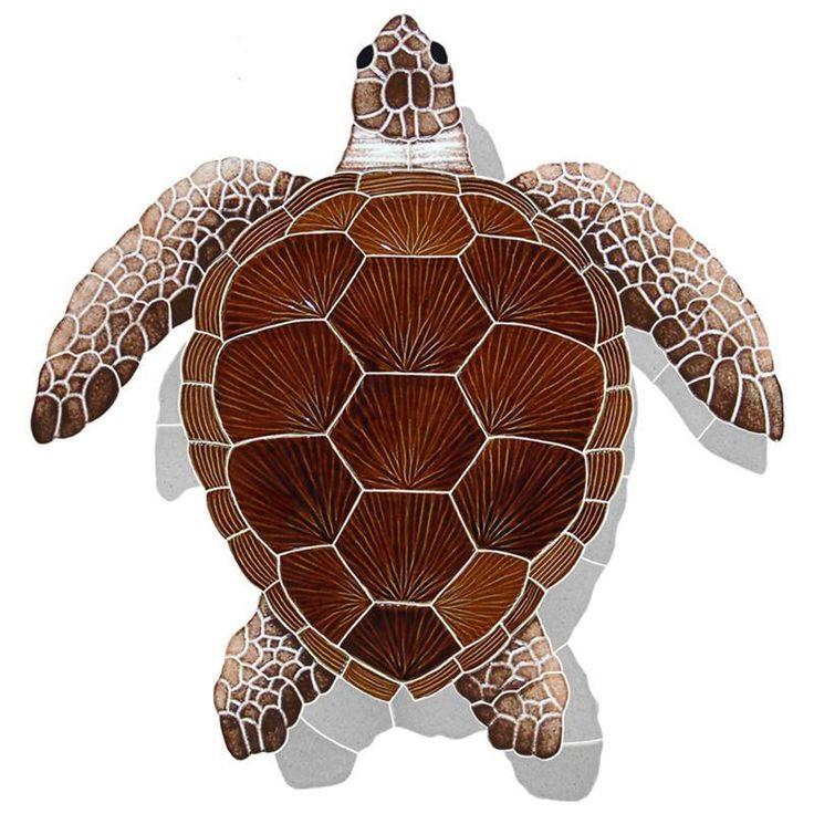 картинки черепаха из м фото можете представить