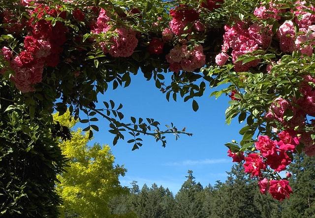 Butchart Gardens of Vancouver Island, British Columbia, Canada