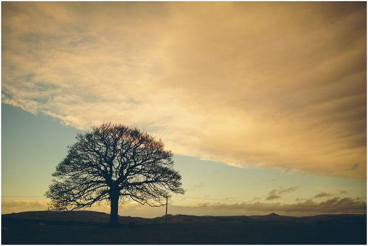 Heaton House Farm Wedding Venue, Cheshire, The Crawleys Photography, cgweddings, sycamore tree, sunset, silhouette shot