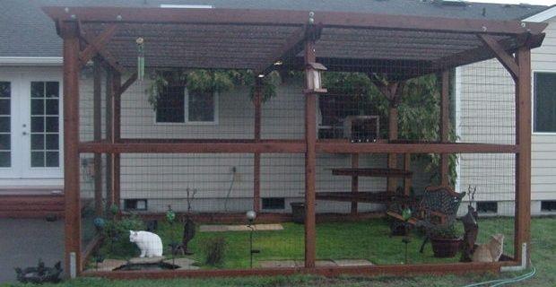 Catio Spaces Outdoor Cat Run Outdoor Cats Cat Enclosure