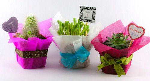 Prácticas ideas sobre cómo hacer recuerdos de boda económicos | Preparar tu boda es facilisimo.com