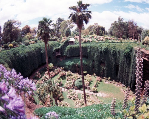 """Umpherston Sinkhole, Mount Gambier, South Australia.  Once a cave formed through dissolution of the limestone, this sinkhole was created when the top of the chamber fell to the floor of the cave, creating the perfect environment for its """"sunken garden""""."""
