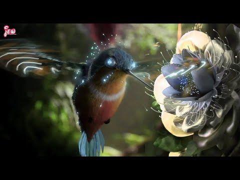 Best WhatsApp 30 Seconds Status Video || Beautiful Heart touching Bamboo Flute Tone || Amazing Bird - YouTube
