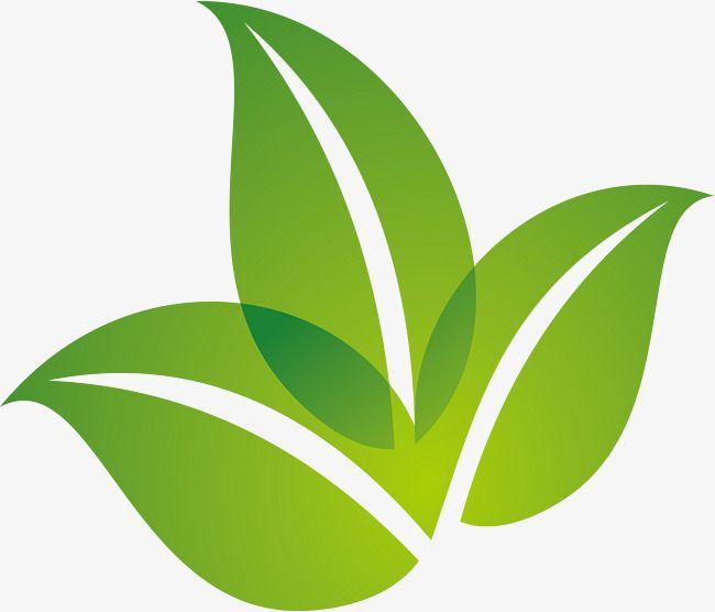 Spring Green Leaf Design Green Logo Design Leaf Logo Green Leaf Background