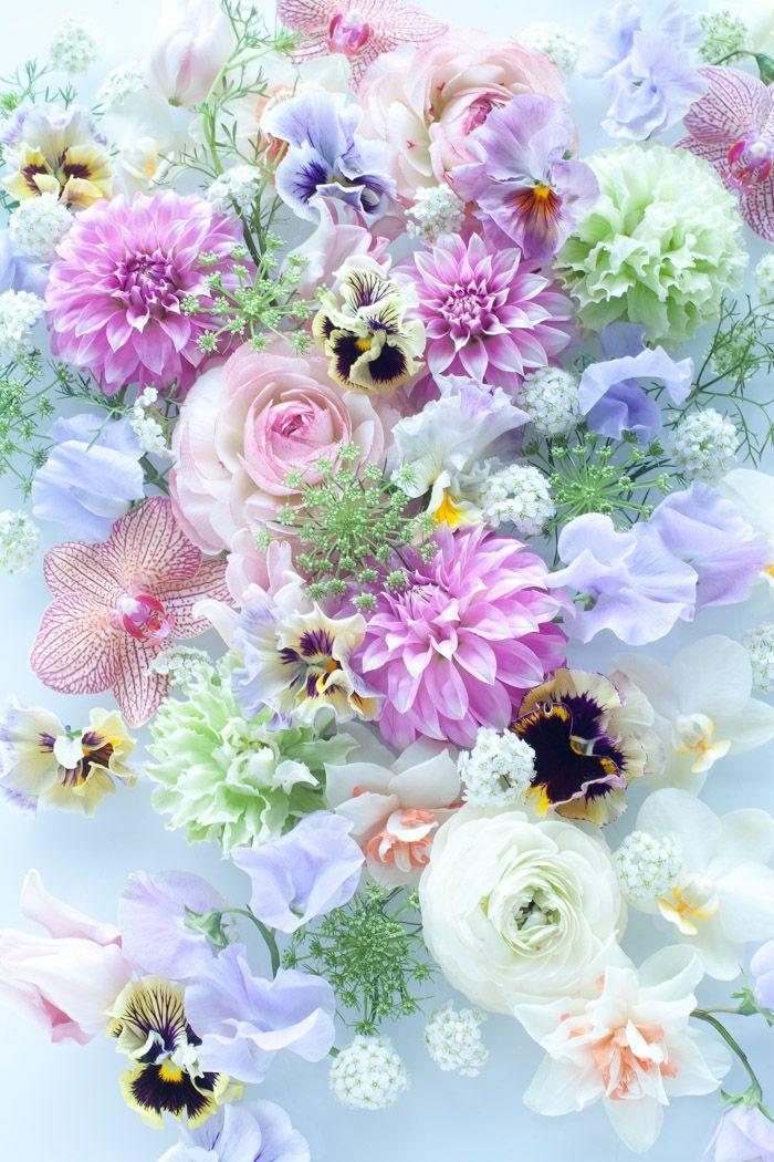 230 Best Soft Pastel Wedding Flowers Images on Pinterest Floral