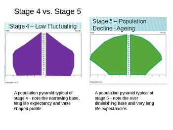 Analyzing and Interpreting Population Pyramids & Dependency Ratio - In this lesson, students learn to analyze and interpret the various types and shapes of population pyramids. $