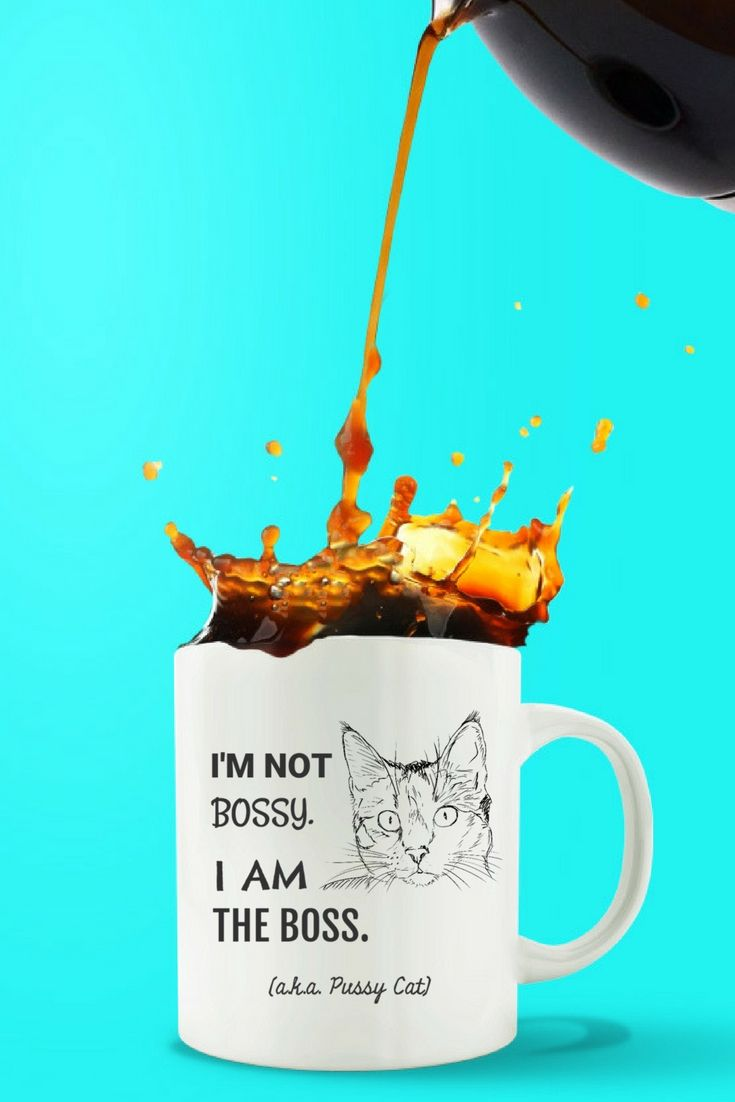 A Cat's Life: I AM THE BOSS. This is a great gift for all cat lovers. Look Inside!