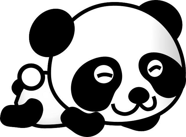 Черный, Медведь - Бесплатные изображения на Pixabay