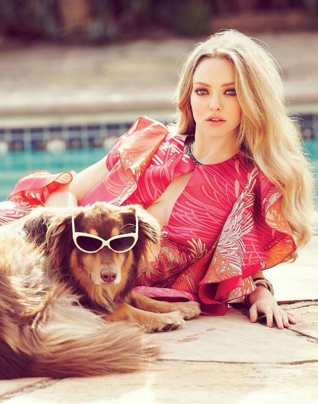 Check out Amanda Seyfried's super cool dog