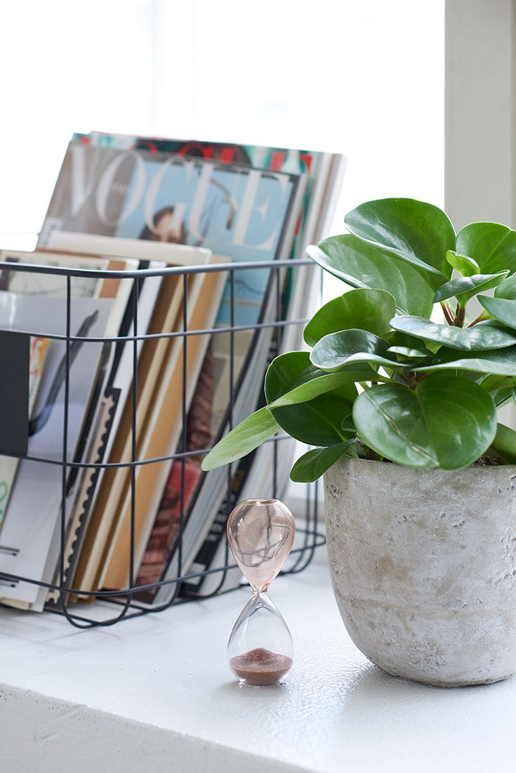 Decorating idea for home office - add some plants.