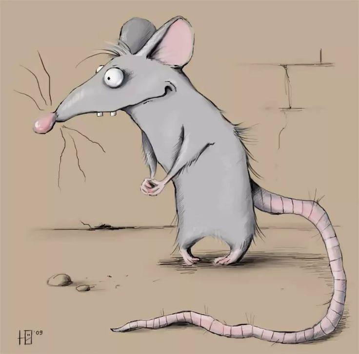 название приколы с мышками картинки красота