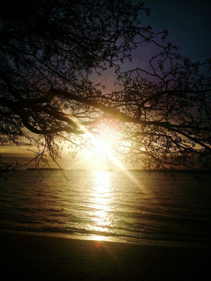 Winter solstice 2013 - noontide