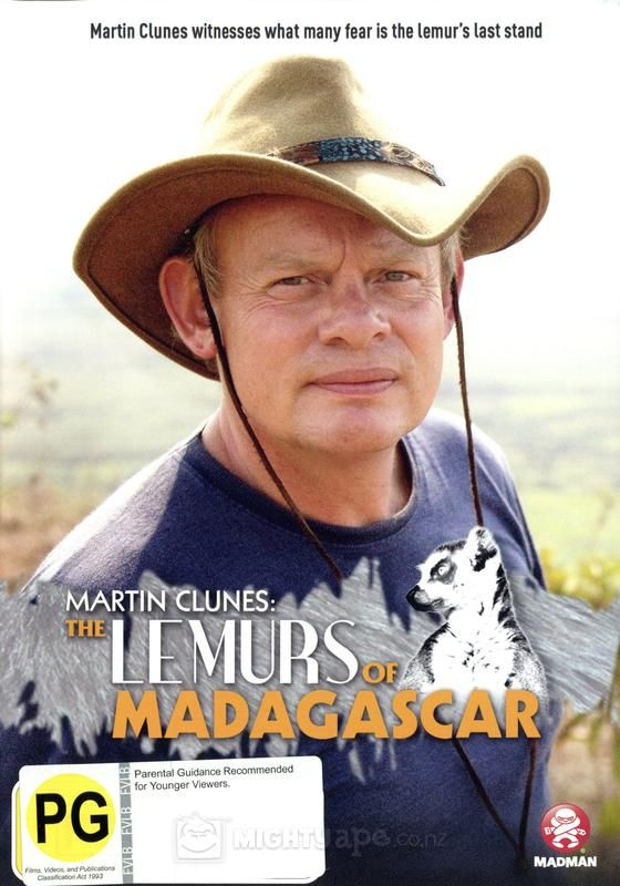 lemurs in madagascar assignment essay Free primate papers, essays,  strong essays: are lemurs primates  they are inhabited in one small protected area in madagascar.